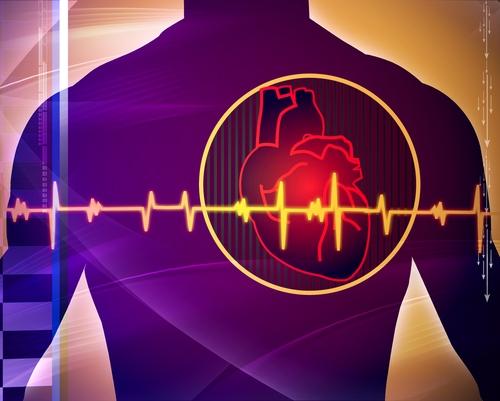 Image result for Heart Scans