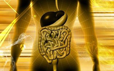 Appendicitis_scan_blog_july09.JPG